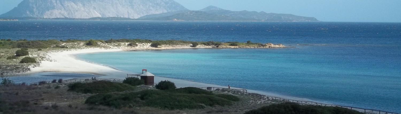 Spiaggia isuledda san teodoro for Porto ottiolu affitti